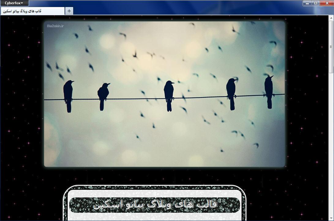قالب وبلاگ پرندگان