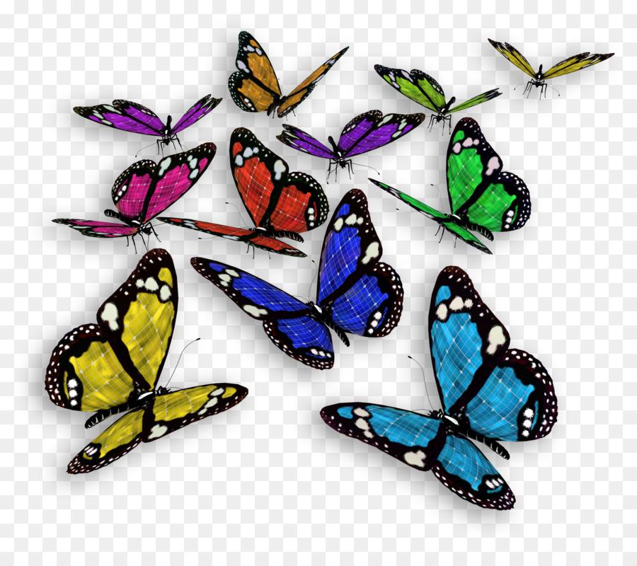 کد زیباساز موس پروانه